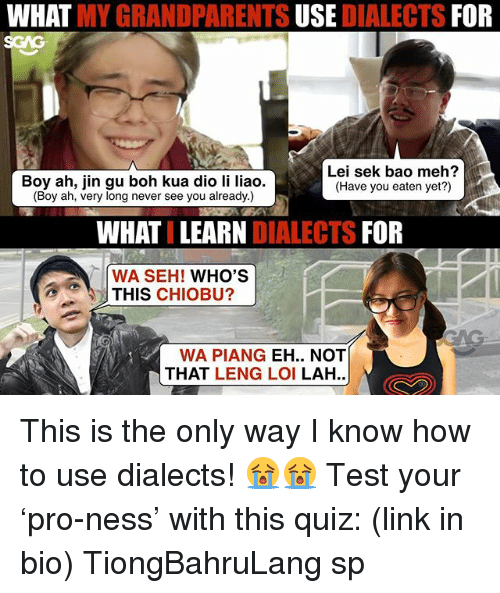 Meh, Memes, and How To: WHAT MY GRANDPARENTS USE DIALECTS FOR  SGAG  Boy ah, jin gu boh kua dio li liao.  (Boy ah, very long never see you already.)  Lei sek bao meh?  (Have you eaten yet?)  WHATI LEARN DIALECTS FOR  WA SEH! WHO'S  THIS CHIOBU?  WA PIANG EH.. NOT  THAT LENG LOI LAH.. This is the only way I know how to use dialects! 😭😭 Test your 'pro-ness' with this quiz: (link in bio) TiongBahruLang sp