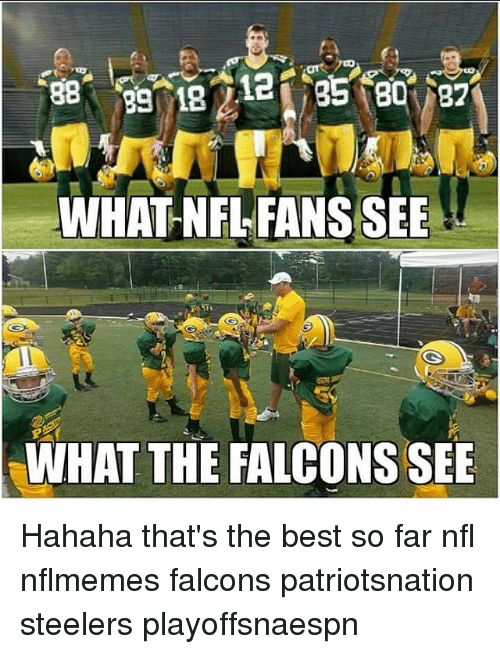 Nflmemes: WHAT NFL FANS SEE  WHAT THE FALCONS SEE Hahaha that's the best so far nfl nflmemes falcons patriotsnation steelers playoffsnaespn