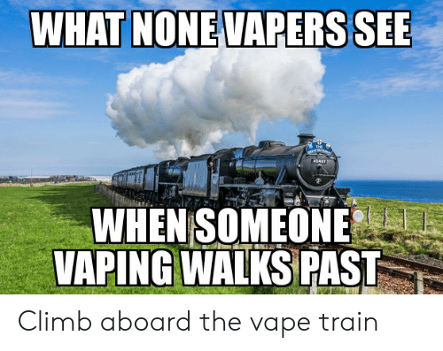 Reddit, Vape, and Train: WHAT NONE VAPERS SEE  THE  TM  43407  WHEN SOMEONE  VAPING WALKS PAST Climb aboard the vape train