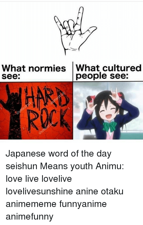 word of the day: What normies What cultured  see:  people see:  HARD  ROCK Japanese word of the day 青春 せいしゅん seishun Means youth Animu: love live lovelive lovelivesunshine anine otaku animememe funnyanime animefunny
