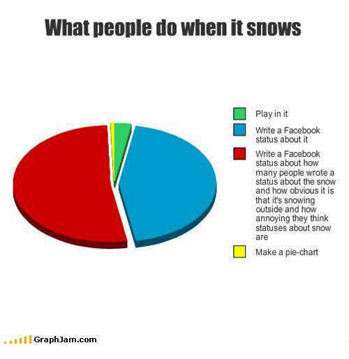 Graph Jam: What people do when itsnows  Play in it  Write a Facebook  status about it  Write a Facebook  status about how  many people wrote a  status about the snow  and how obvious it is  that it's snowing  outside and how  annoying they think  statuses about snow  are  Make a pie-chart  III Graph Jam com