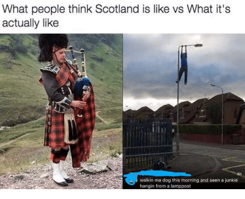 junkie: What people think Scotland is like vs What it's  actually like  walkin ma dog this morning and seen a junkie  hangin from a lamppost