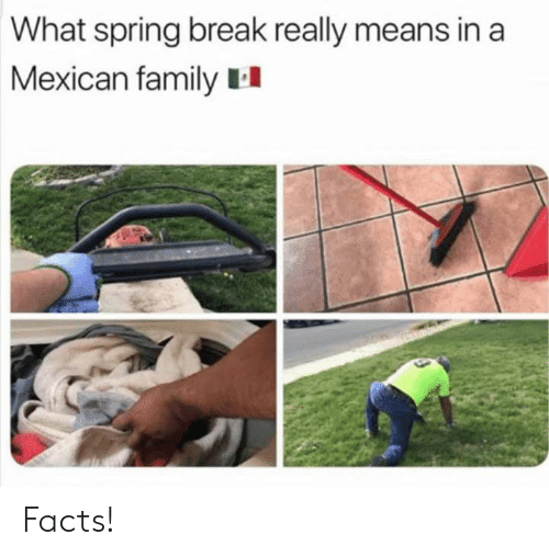 Spring Break: What spring break really means in a  Mexican family II Facts!