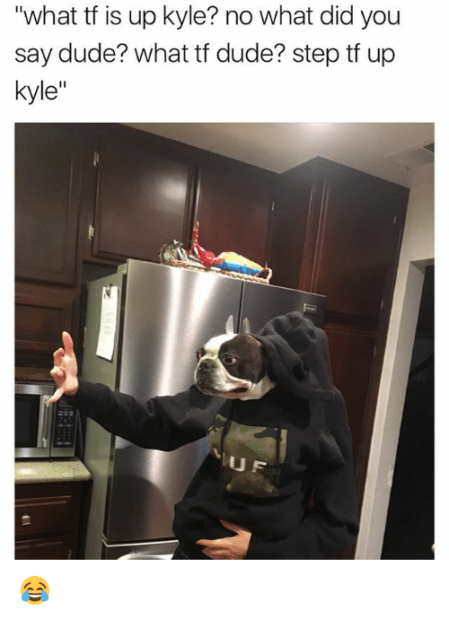 """what did you say: """"what tf is up kyle? no what did you  say dude? what tf dude? step tf up  kyle  UF 😂"""