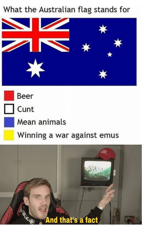 Stands: What the Australian flag stands for  Beer  Cunt  Mean animals  Winning a war against emus  And that's a fact