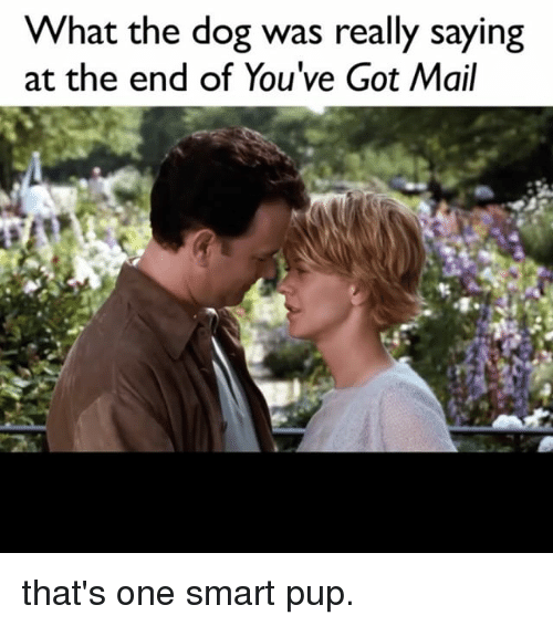 You've Got Mail: What the dog was really saying  at the end of You've Got Mail that's one smart pup.