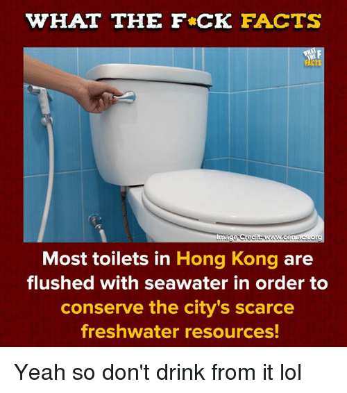 acs: WHAT THE F CK FACTS  NCR  lmage Credits www.cen acs.org  Most toilets in Hong Kong are  flushed with seawater in order to  conserve the city's scarce  freshwater resources! Yeah so don't drink from it lol