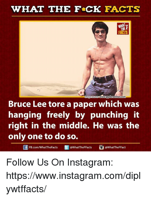 WHAT THE FCK FACTS Ce WwwSpyderonlinescom Mageso Bruce Lee ...