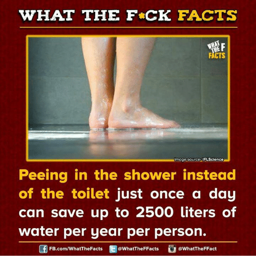 Dank, Facts, and Shower: WHAT THE FCK FACTS  FACTS  MImage source IFLScience  Peeing in the shower instead  of the toilet just once a day  can save up to 2500 liters of  water per year per person.  FB.com/WhatThe Facts  @WhatTheFFacts  @WhatTheFFact