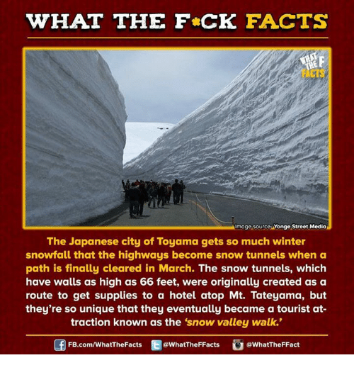 """Dank, 🤖, and Feet: WHAT THE FCK FACTS  Image source Yonge Street Media  The Japanese city of Toyama gets so much winter  snowfall that the highways become snow tunnels when a  path is finally cleared in March. The snow tunnels, which  have walls as high as 66 feet, were originally created as a  route to get supplies to a hotel atop Mt. Tateyama, but  they're so unique that they eventually became a tourist at-  traction known as the 'snow valley walk.""""  FB.com/WhatThe Facts  @WhatTheFFacts  @WhatTheFFact"""