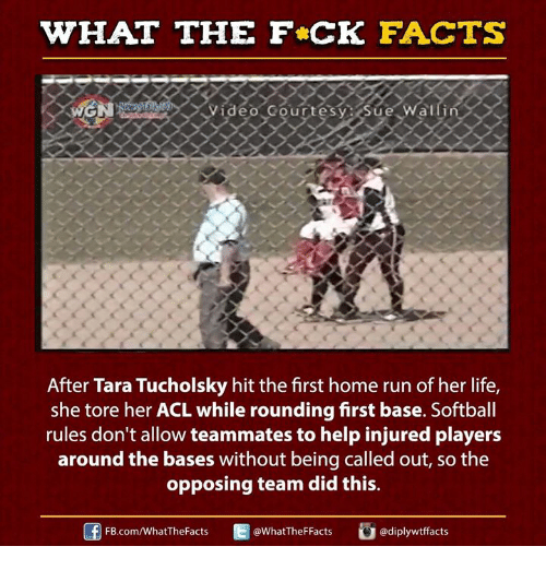 fb.com: WHAT THE FCK FACTS  WGN  Video Gourtesy: Sue  After Tara Tucholsky hit the first home run of her life,  she tore her ACL while rounding first base. Softball  rules don't allow teammates to help injured players  around the bases without being called out, so the  opposing team did this.  FB.com/WhatThe Facts  @WhatTheFFacts  adiplywtffacts