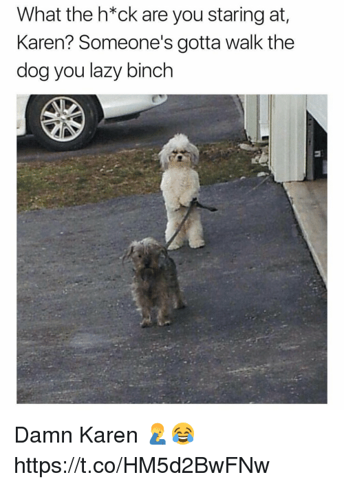Lazy, Dog, and You: What the h*ck are you staring at  Karen? Someone's gotta walk the  dog you lazy binch Damn Karen 🤦♂️😂 https://t.co/HM5d2BwFNw