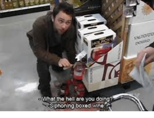what the hell are you doin siphoning boxed wine 30918581 🔥 25 best memes about boxed wine boxed wine memes