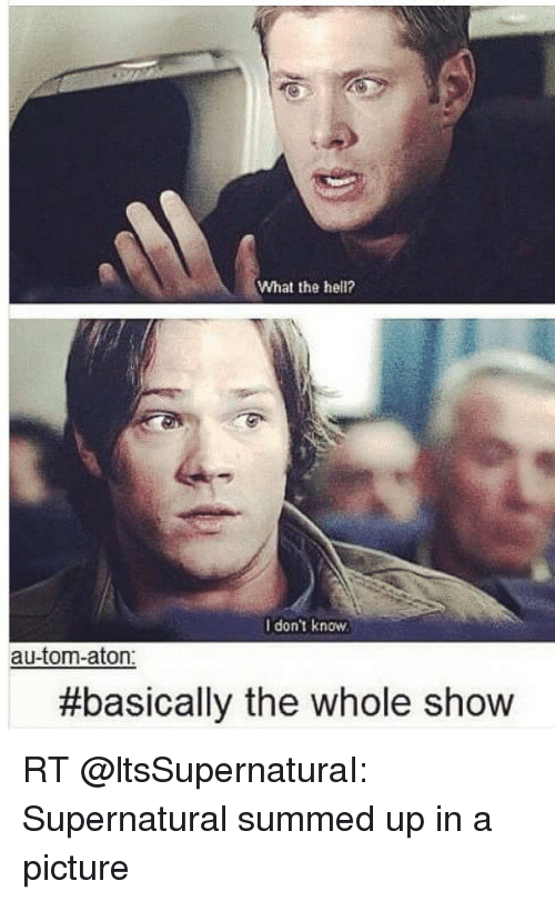Memes and 🤖: What the hell?  I don't know  autom-aton  #basically the whole show RT @ltsSupernaturaI: Supernatural summed up in a picture