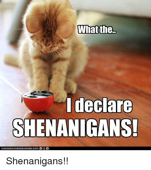 Meme What If - what the i declare shenanigans shenanigans ...