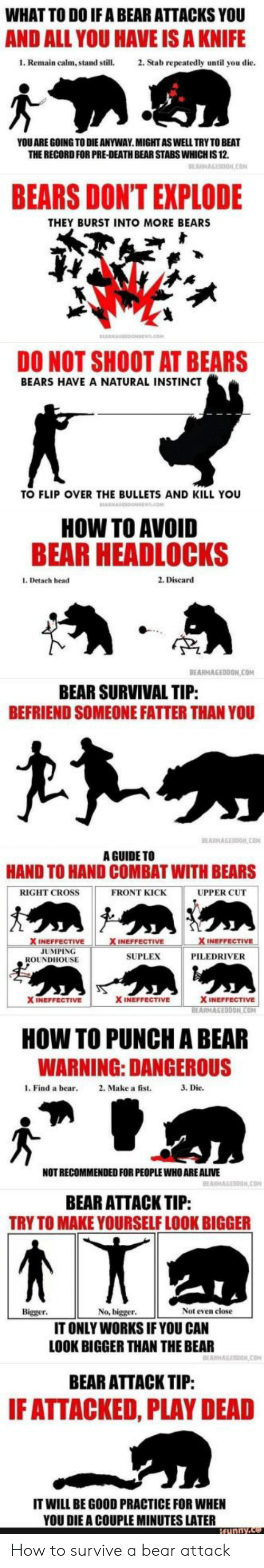 Instincts: WHAT TO DO IF A BEAR ATTACKS YOU  AND ALL YOU HAVE IS A KNIFE  1. Remain calm, stand still.2. Stab repeatedly until you die  YOU ARE GOING TO DIE ANYWAY.MIGHTASWELL TRY TO BEAT  THE RECORD FOR PRE-DEATH BEAR STABS WHICH IS 12.  BEARS DONT EXPLODE  THEY BURST INTO MORE BEARS  DO NOT SHOOT AT BEARS  BEARS HAVE A NATURAL INSTINCT  TO FLIP OVER THE BULLETS AND KILL YOU  HOW TO AVOID  BEAR HEADLOCKS  1. Detach head  2. Discard  TP  BEARMAGEDDON COM  BEAR SURVIVAL TIP  BEFRIEND SOMEONE FATTER THAN YOU  A GUIDE TO  HAND TO HAND COMBAT WITH BEARS  RIGHT CROSS  FRONT KICK  UPPER CUT  INEFFECTIVE  JUMPING  SUPLEX  PILEDRIVER  ROUNDHOUSE  X INEFFECTIVE  X INEFFECTIVE  ON  HOW TO PUNCH A BEAR  WARNING: DANGEROUS  l. Find a bear 2. Make a fist.  3. Die.  NOT RECOMMENDED FOR PEOPLE WHO ARE ALIVE  BEAR ATTACK TIP:  TRY TO MAKE YOURSELF LOOK BIGGER  Bigger  No, bigger  Not even close  IT ONLY WORKS IF YOU CAN  LOOK BIGGER THAN THE BEAR  BEAR ATTACK TIP:  F ATTACKED, PLAY DEAD  IT WILL BE GOOD PRACTICE FOR WHEN  YOU DIE A COUPLE MINUTES LATER How to survive a bear attack