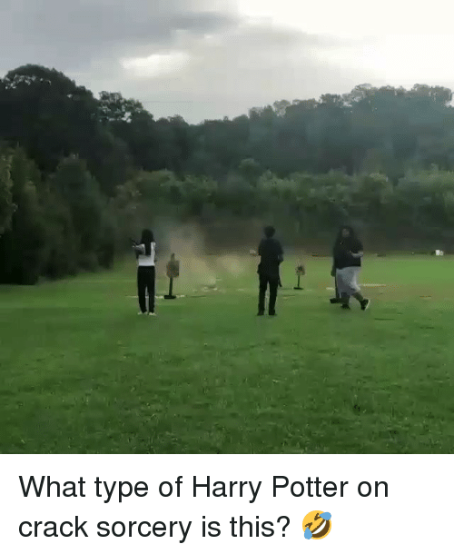 sorcery: What type of Harry Potter on crack sorcery is this? 🤣