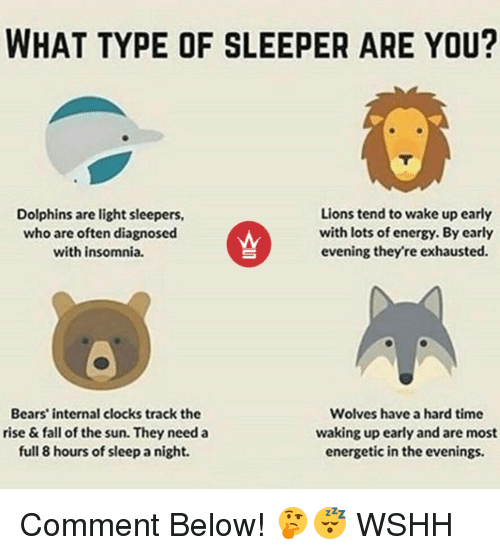 sleepers: WHAT TYPE OF SLEEPER ARE YOU?  Lions tend to wake up early  Dolphins are light sleepers,  with lots of energy. By early  who are often diagnosed  evening they're exhausted.  with insomnia.  Bears' internal clocks track the  Wolves have a hard time  waking up early and are most  rise & fall of the sun. They need a  full 8 hours of sleepanight.  energetic in the evenings. Comment Below! 🤔😴 WSHH