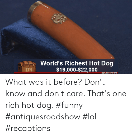 Dog: What was it before? Don't know and don't care. That's one rich hot dog. #funny #antiquesroadshow #lol #recaptions