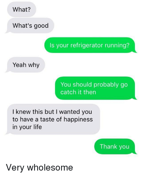 Happiness In: What?  What's good  Is your refrigerator running?  Yeah why  You should probably go  catch it then  I knew this but I wanted you  to have a taste of happiness  in your life  Thank you Very wholesome