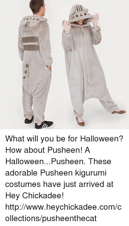 Dank, Halloween, and Http: What will you be for Halloween? How about Pusheen!  A Halloween...Pusheen. These adorable Pusheen kigurumi costumes have just arrived at Hey Chickadee!  http://www.heychickadee.com/collections/pusheenthecat