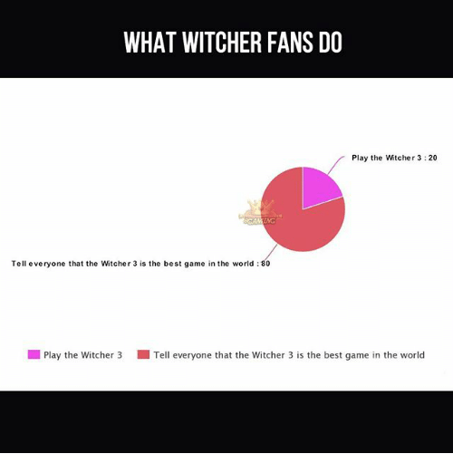 Witchers: WHAT WITCHER FANS DO  Play the Witcher 3:20  Tell everyone that the Witcher 3 is the best game in the world 80  l Play the witcher 3 Tell everyone that the witcher 3 is the best game in the world