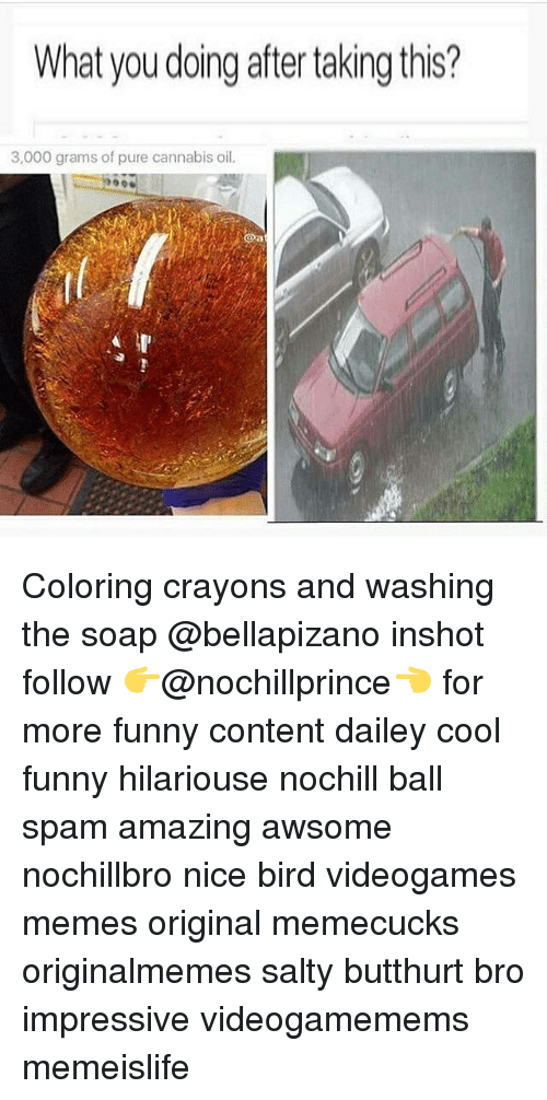 Cannabies: What you doing after taking this?  3,000 grams of pure cannabis oil. Coloring crayons and washing the soap @bellapizano inshot follow 👉@nochillprince👈 for more funny content dailey cool funny hilariouse nochill ball spam amazing awsome nochillbro nice bird videogames memes original memecucks originalmemes salty butthurt bro impressive videogamemems memeislife
