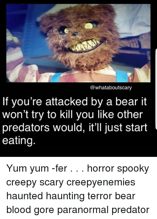 Creepy, Memes, and Bear: @whataboutscary  If you're attacked by a bear it  won't try to kill you like other  predators would, it'll just start  eating Yum yum -fer . . . horror spooky creepy scary creepyenemies haunted haunting terror bear blood gore paranormal predator
