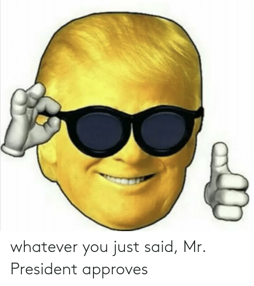 mr president: whatever you just said, Mr. President approves