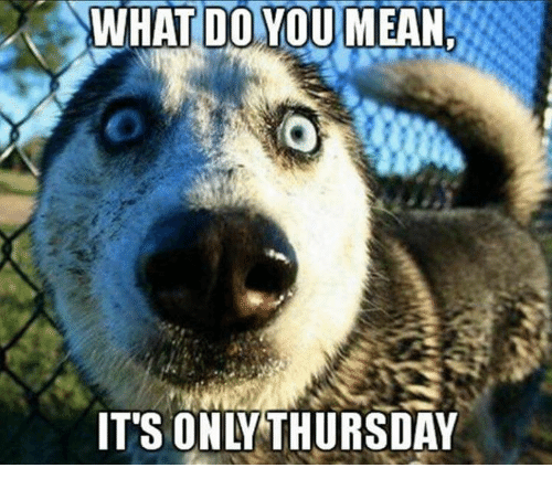 Dank, 🤖, and Thursday: WHATIDOYOUMEAN IT'S ONLY THURSDAY Its Only Thursday Meme