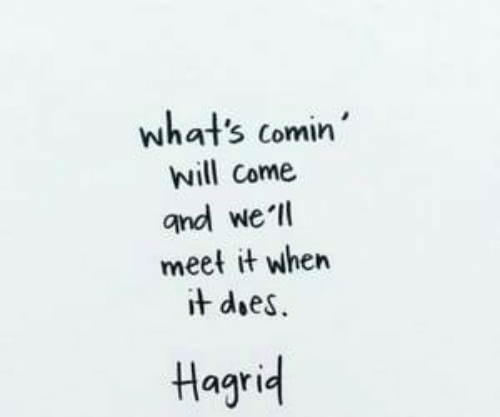 hagrid: what's comin  will come  and we ll  meet it when  t does  Hagrid