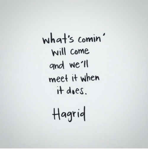 hagrid: what's comin'  will come  and we'l  meet it when  it doeS.  Hagrid