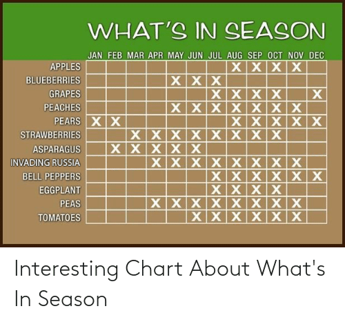 sep: WHAT'S IN SEASON  JAN FEB MAR APR MAY JUN JUL AUG SEP OCT NOV DEC  XXXX  APPLES  XX х  BLUEBERRIES  XXXX  XX X х Х X Х  XXXXX  GRAPES  PEACHES  PEARS XX  XXXXXXXX  XXXXX  STRAWBERRIES  ASPARAGUS  XX X XХ х х х  XXX X Х х  XXXX  XXXXXXXX  XXXXXX  INVADING RUSSIA  BELL PEPPERS  EGGPLANT  PEAS  TOMATOES Interesting Chart About What's In Season