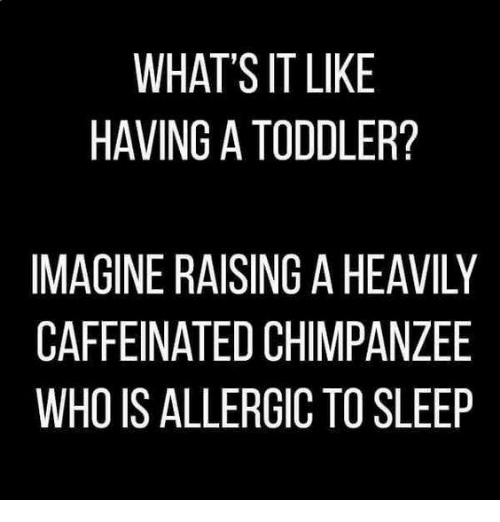 Memes, 🤖, and Caffeine: WHAT'S IT LIKE  HAVING ATODDLER?  IMAGINE RAISING AHEAVILY  CAFFEINATED CHIMPANZEE  WHO IS ALLERGIC TO SLEEP