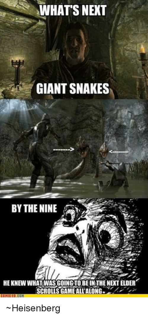 Memes, Game, and Giant: WHATS NEXT  GIANT SNAKES  BY THE NINE  HEKNEW WHAT WAS GOING TO BE IN THE NEXT ELDER  SCROLLS GAME ALL'ALONG ~Heisenberg