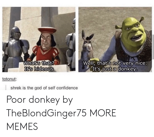 hideous: Whats that?  It's hideous  Well, that's not very nice.  It's just a donkey  totonut:  shrek is the god of self confidence Poor donkey by TheBlondGinger75 MORE MEMES