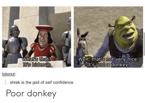 hideous: Whats that?  It's hideous  Well, that's not very nice.  It's just a donkey  totonut:  shrek is the god of self confidence Poor donkey