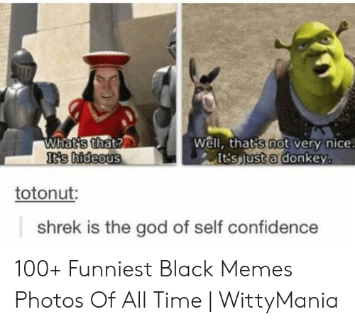 hideous: What's that?  It's hideous  Well, that's not very nice.  It'sjust a donkey.  totonut:  shrek is the god of self confidence 100+ Funniest Black Memes Photos Of All Time | WittyMania