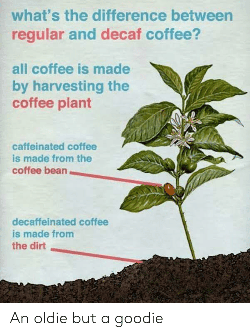 decaf coffee: what's the difference between  regular and decaf coffee?  all coffee is made  by harvesting the  coffee plant  caffeinated coffee  is made from the  coffee bean  decaffeinated coffee  is made from  the dirt An oldie but a goodie