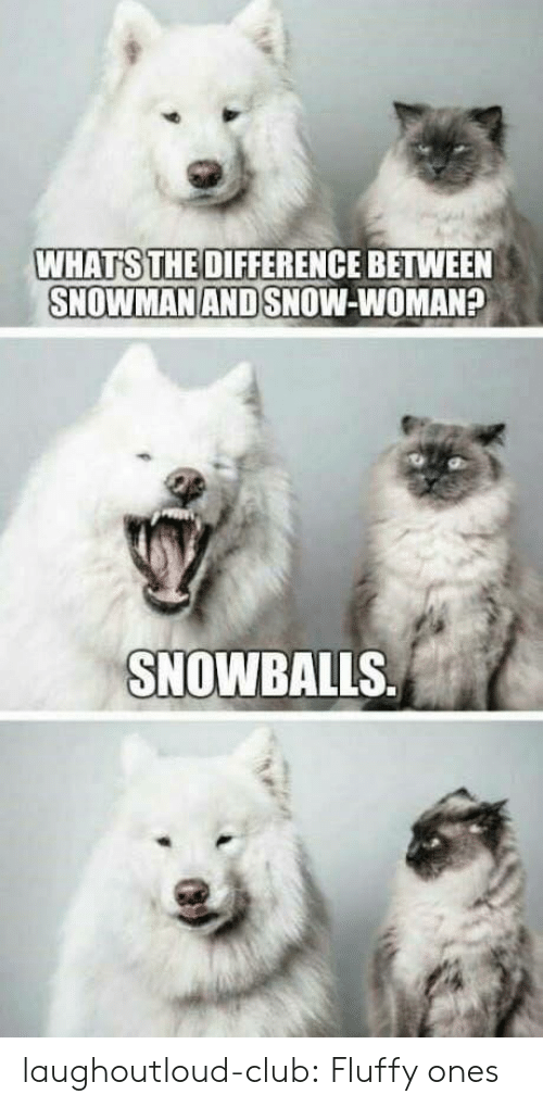 Whats The Difference: WHATS THE DIFFERENCE BETWEEN  SNOWMAN AND SNOW-WOMAN?  SNOWBALLS laughoutloud-club:  Fluffy ones