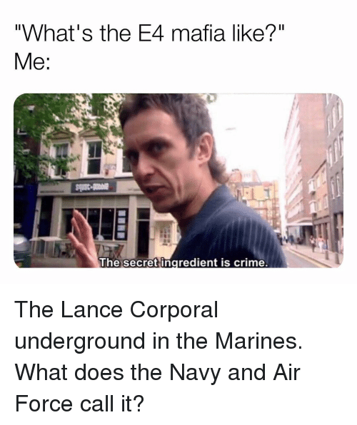 "Marines: ""What's the E4 mafia like?""  The secret ingredient is crime. The Lance Corporal underground in the Marines. What does the Navy and Air Force call it?"