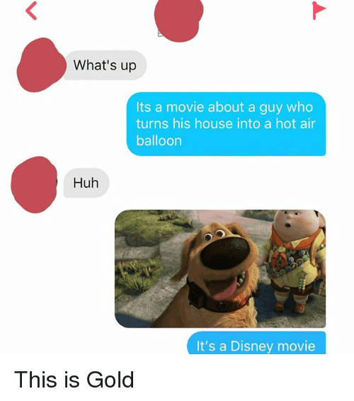 Disney, Huh, and Hot Air: What's up  Its a movie about a guy who  turns his house into a hot air  balloon  Huh  It's a Disney movie This is Gold