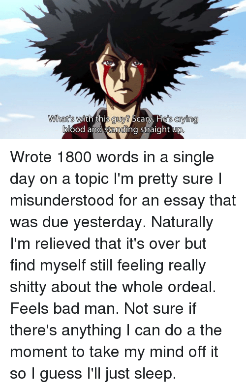 1800 word essay pages