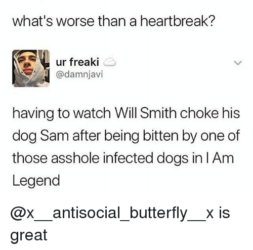 Dogs, Memes, and Will Smith: what's worse than a heartbreak?  ur freak|  @damnjavi  having to watch Will Smith choke his  dog Sam after being bitten by one of  those asshole infected dogs in lAm  Legend @x__antisocial_butterfly__x is great