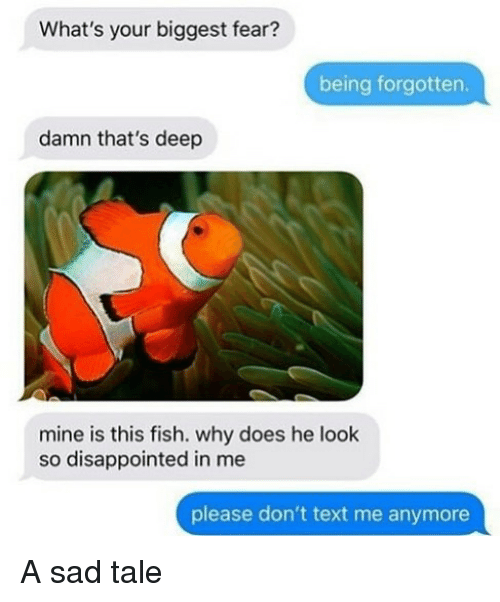 Disappointed, Fish, and Text: What's your biggest fear?  being forgotten.  damn that's deep  mine is this fish. why does he look  so disappointed in me  lease don't text me anymore A sad tale
