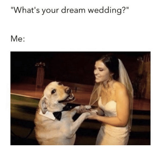 "Dank, Wedding, and Dreams: ""What's your dream wedding?""  Me"