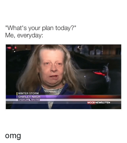 """winter storm: """"What's your plan today?""""  Me, everyday:  WINTER STORM  SHIRLEY NASH  Cornelius Resident  WCCB NEWS@TEN omg"""