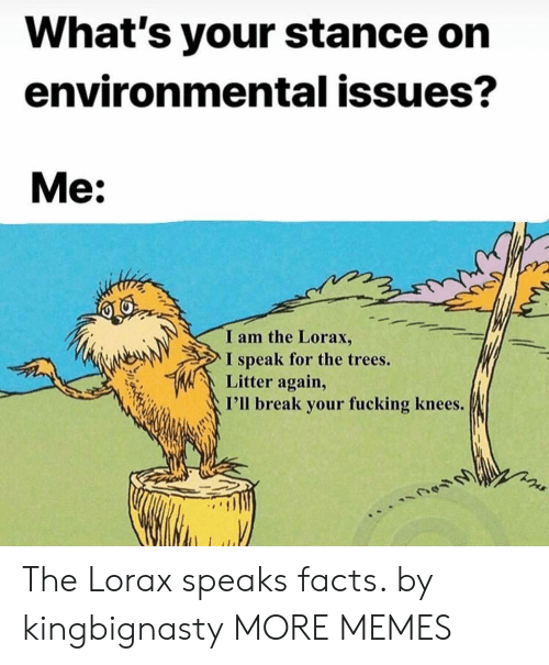 Environmental: What's your stance on  environmental issues?  Me:  I am the Lorax,  I speak for the trees.  Litter again,  I'll break your fucking knees. The Lorax speaks facts. by kingbignasty MORE MEMES