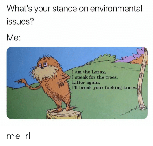 Environmental: What's your stance on environmental  ssues?  Me:  I am the Lorax,  I speak for the trees.  Litter again,  I'll break your fucking knees me irl