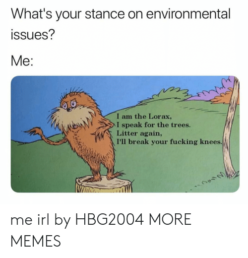 Environmental: What's your stance on environmental  ssues?  Me:  I am the Lorax,  I speak for the trees.  Litter again,  I'll break your fucking knees me irl by HBG2004 MORE MEMES